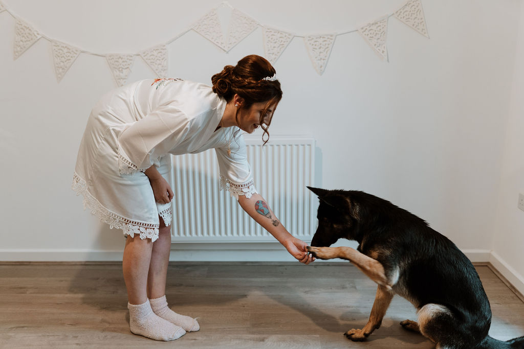 bride shaking dogs paw